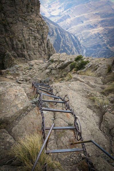 ladder-of-determination
