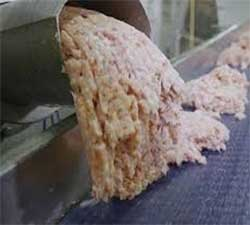 Culo esclavo de papel higiénico humano