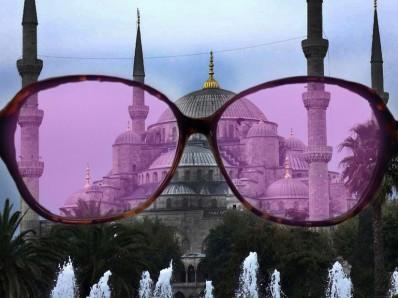turkey rose glasses